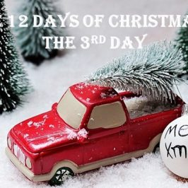 12 DAYS OF CHRISTMAS: On the Third Day…
