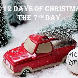 12 DAYS OF CHRISTMAS: On the Seventh Day…