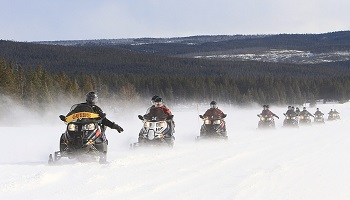 Snowmobiles & Winter Vehicles